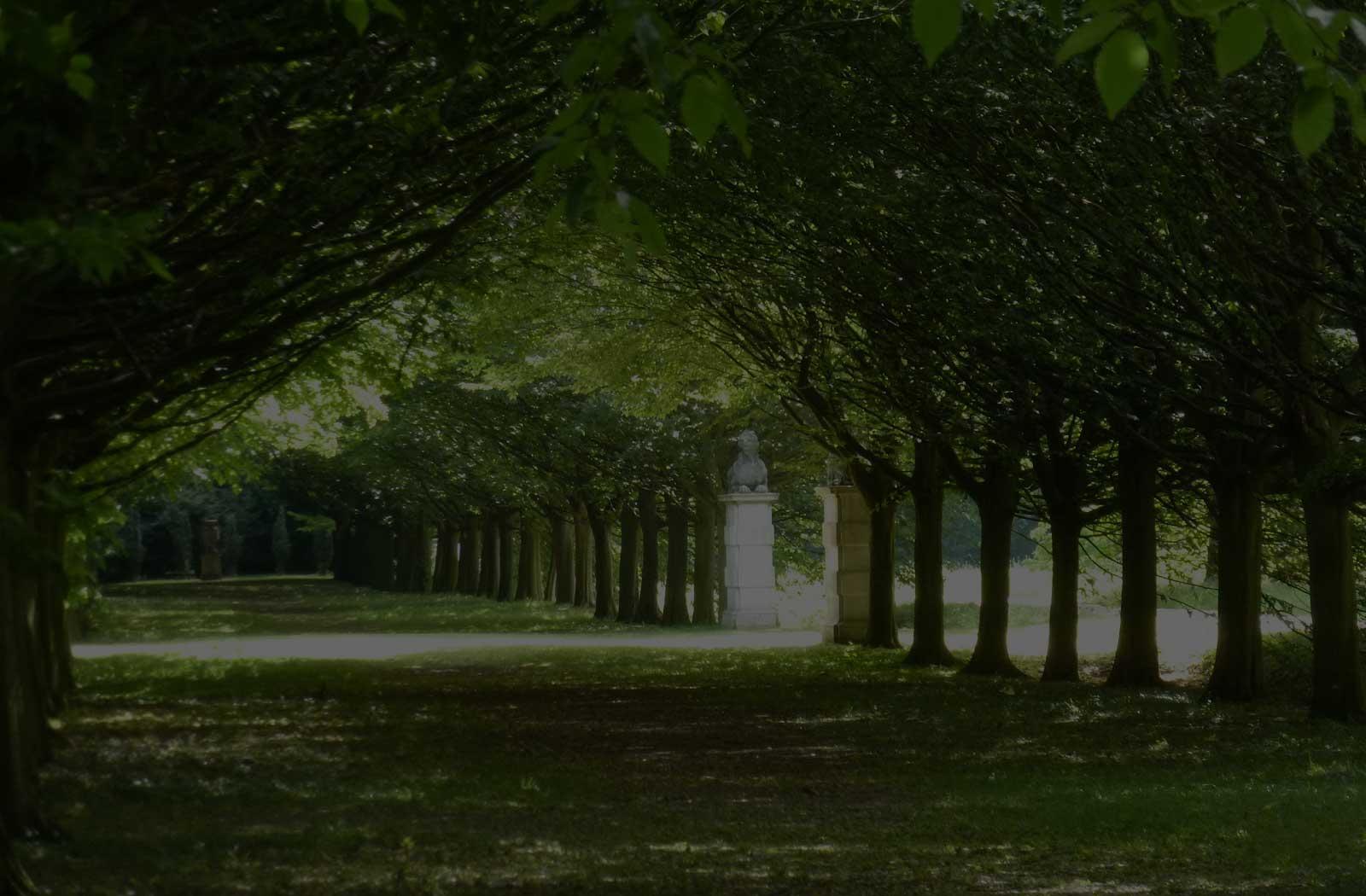AB Tree Care